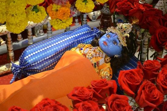 krishna-janmashtami-block-party (9)